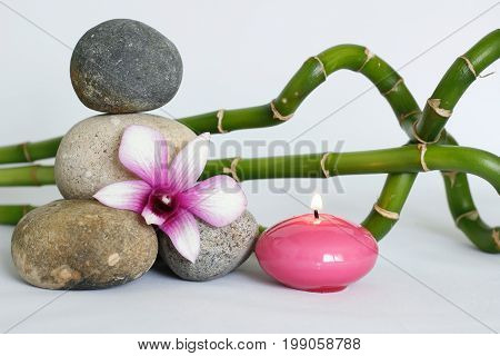 Natural gray pebbles arranged in zen lifestyle with two bicoloured orchids on the right side of bamboo twisted on white background