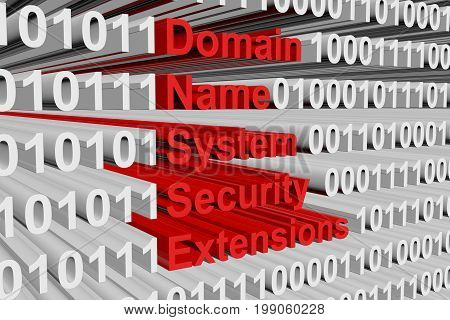 Domain Name System Security Extensions in the form of binary code, 3D illustration