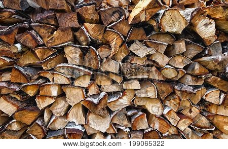 Stack of dry birch firewood harvested for winter