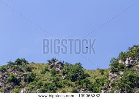 Eagle Flying Over The Rocks