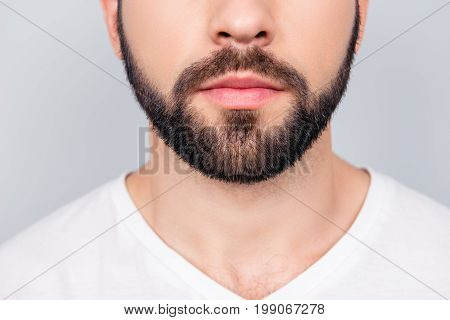 Close Up Cropped Photo Of A Styling Of A Brunet`s Guy Beard, Isolated On Pure Light Blue Background.