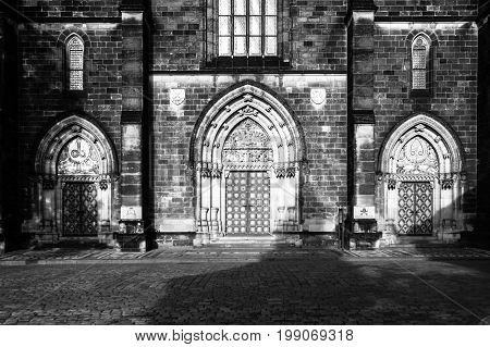 Gothic style entrance portal of Basilica of Saint Peter and Paul in Vysehrad, Prague, Czech Republic. Black and white image