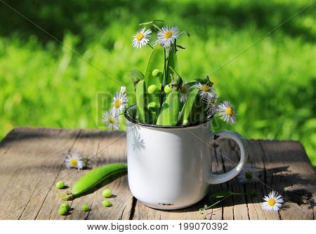 green beans with wild flowers in the Cup