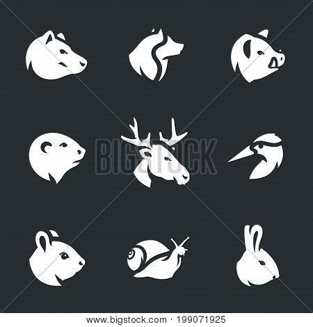 Bear, wolf, wild boar, beaver, elk, woodpecker, squirrel, snail, hare.