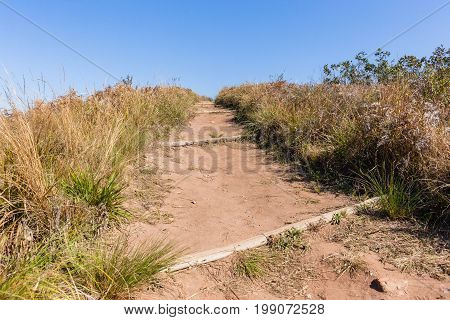 Hiking path dirt trail towards blue sky horizon countryside landscape.