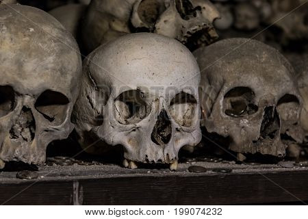 Close up detailed view of human skulls in Kostnice Church in Kutna Hora Czech republic