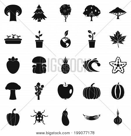 Greengrocery icons set. Simple set of 25 greengrocery vector icons for web isolated on white background