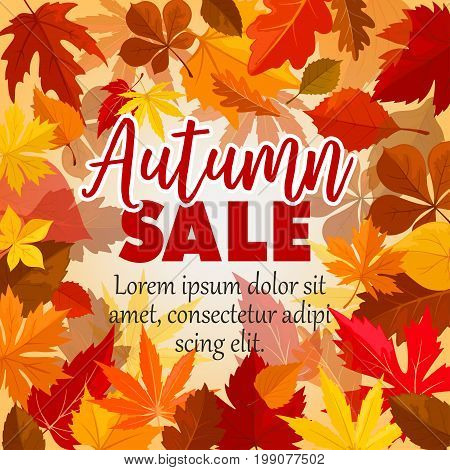 Autumn sale poster for September seasonal shopping. Vector background of maple, oak or elm and rowan tree leaf pattern of falling leaves for shop autumn promo offer design