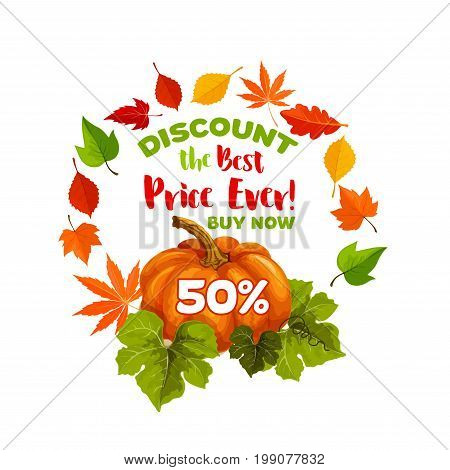 Autumn sale 50 percent discount poster of pumpkin and September tree foliage of maple, oak acorn or elm and poplar or aspen falling leaves and autumn harvest for seasonal shopping