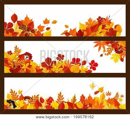 Autumn leaf, forest mushroom and berry banner. Yellow and orange foliage of maple tree, chestnut and elm, cep mushroom, red briar and rowan berry branches border for fall nature season themes design
