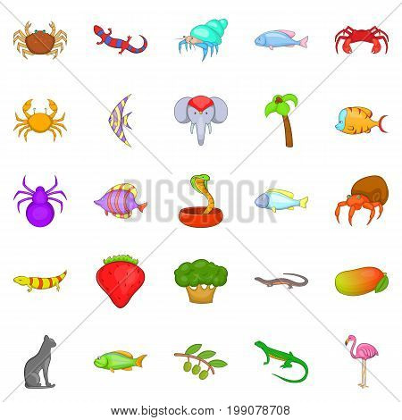 Animal kingdom icons set. Cartoon set of 25 animal kingdom vector icons for web isolated on white background