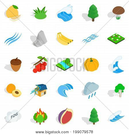 Grain icons set. Isometric set of 25 grain vector icons for web isolated on white background