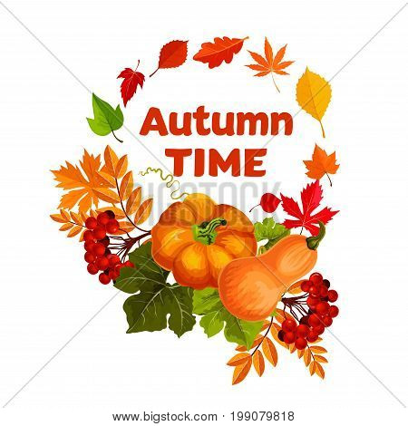 Autumn harvest pumpkin and leaf poster. Fall season maple leaves, pumpkin vegetable, orange and yellow foliage of forest tree and rowanberry fruit branch with red leaf frame for autumn nature design
