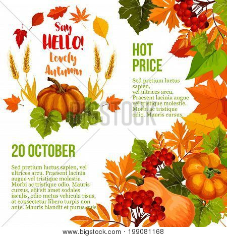 Autumn season sale poster template. Fall leaf, autumn harvest pumpkin vegetable and wheat banner, decorated with orange maple foliage and rowan berry branch for fall seasonal sale promotion design