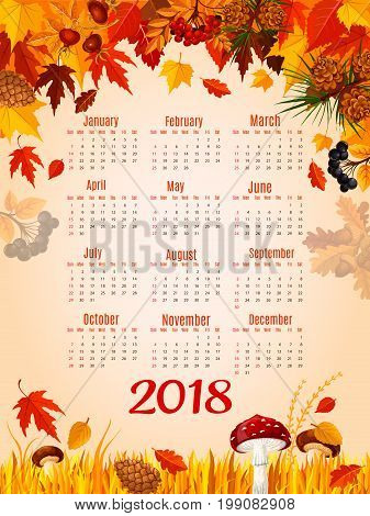 Autumn leaves calendar 2018 poster. Vector design template of autumn maple leaf, oak acorns or rowan berry harvest and mushrooms in birch, aspen or elm forest nature with fir and pine cones