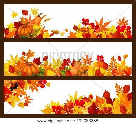 Autumn foliage and fall leaves banners templates for seasonal greeting cards or autumn sale design. Vector set of maple leaf, oak acorn or pumpkin and rowan berry harvest with mushrooms and berries