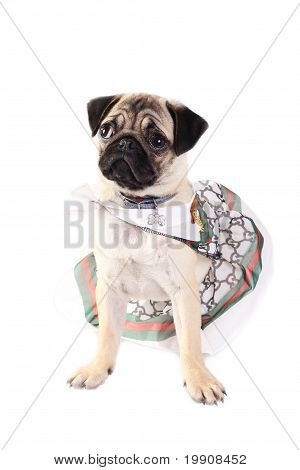 Stylish Lady Mops Wearing Skirt And Scarf