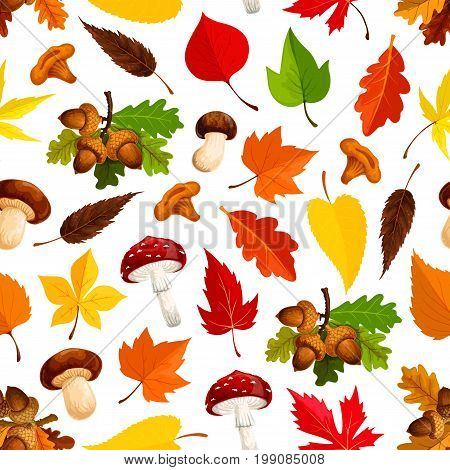 Autumn leaf and mushroom seamless pattern background. Fall season yellow maple leaf, red chestnut tree foliage, acorn branch, forest mushroom of chanterelle, fly agaric for autumn nature themes design