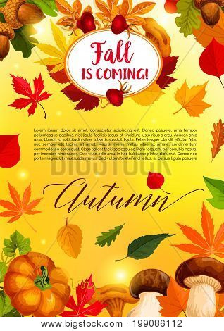 Autumn leaf and harvest vegetable banner template. Fall season maple leaves, pumpkin vegetable, forest mushroom and acorn poster design with frame of autumn tree foliage and briar berry branch