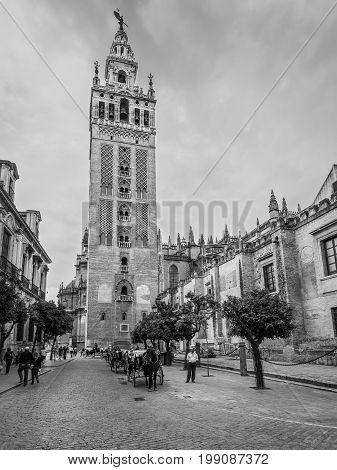Seville Spain - May 20 2014: The Giralda (La Giralda) a former minaret converted to a bell tower for the Cathedral of Seville in Seville Andalusia Spain. UNESCO World Heritage Site. Black and white photography.