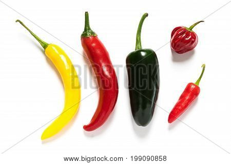 Various hot chillies isolated on white background.