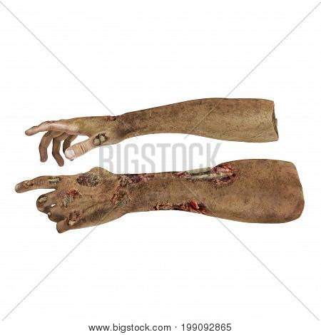 Halloween theme: terrible zombie hand on white background. 3D illustration, clipping path
