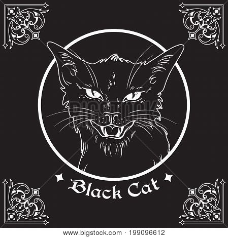 Hand Drawn Black Cat Head In Frame Over Black Background And Ornate Gothic Design Elements. Wiccan F