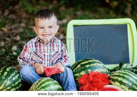boy eating watermelon. happy child in the field. Summer mood. Copy space. chalk nameplate.