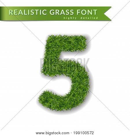 Green Grass Number