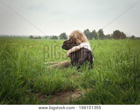 Little girl hugging a dog. Field tall grass summer