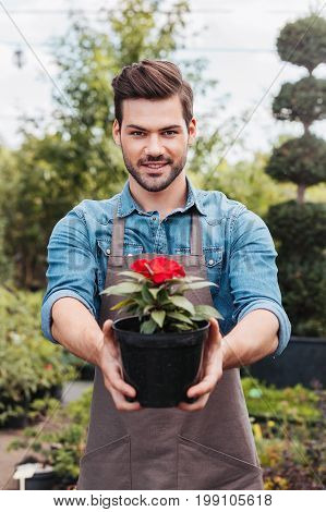 Portrait Of Smiling Gardener Showing Flower In Flowerpot And Looking At Camera
