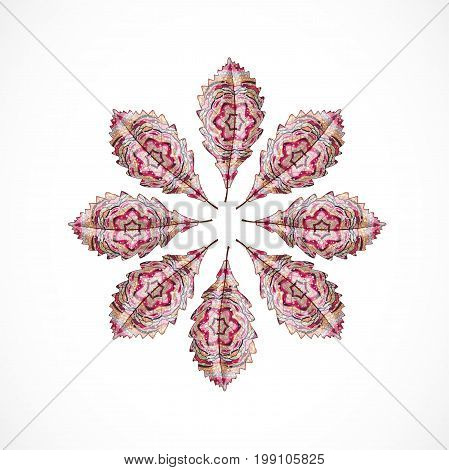 Abstract isolated colorful leafs. Illustration 10 version