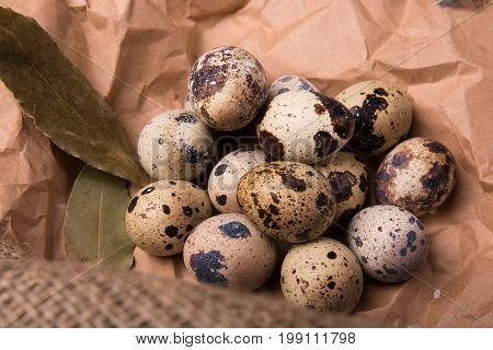 Closeup of wholesome speckled quail eggs, aromatic green twigs of rosemary, dried up bay leaves on a piece of grocery paper, ingredients for healthy diet on a light paper background.
