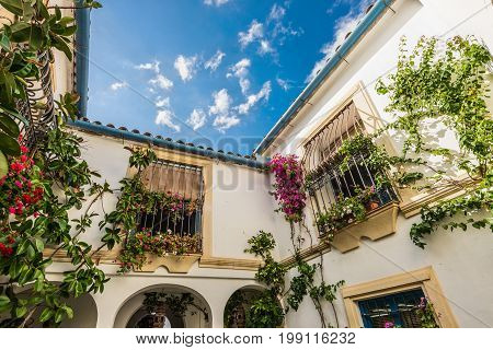 Cordoba Spain - May 20 2014: Typical famous popular inner court in Cordoba Andalusia Spain. Courtyard of Cordoba declared Intangible Heritage of Humanity by UNESCO.