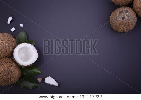 A top view of a set of coconuts with green leaves on a dark blue background. Nutritious exotic fruits for summer desserts and delicious beverages. A composition of fresh cocos. Copy space.