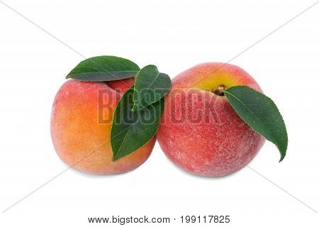 A close-up picture of couple natural bright fruits full of vitamins. Two whole orange peaches, isolated over the white background. Colourful fresh fruits for healthy summer breakfast and snacks.