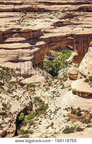 The Natural Bridges National Monument in southeastern Utah was declared a National Monument in 1908; and the bridges named