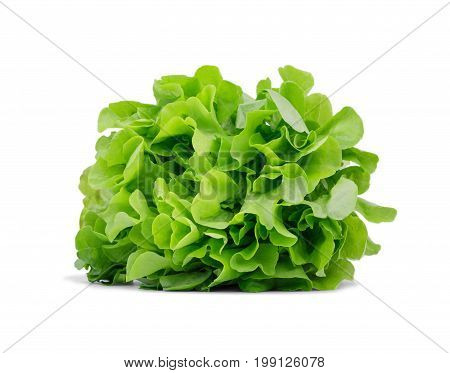 Organic green lettuce leaves, isolated on a white background. A big bouquet of healthful salad leaves. Natural nutritious ingredients for diets. Summer harvest.