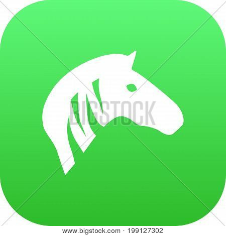 Vector Horse Element In Trendy Style.  Isolated Zebra Icon Symbol On Clean Background.