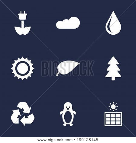 Collection Of Overcast, Solar, Polar Bird And Other Elements.  Set Of 9 Natural Icons Set.