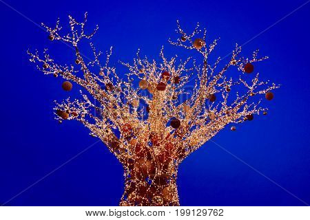 Australian Christmas Boab tree decorated with light chains and Christmas bowls in a blue sky background in Perth. Baobab tree