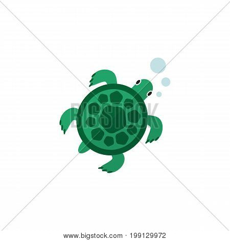 Tortoise Vector Element Can Be Used For Tortoise, Sea, Turtle Design Concept.  Isolated Turtle Flat Icon.