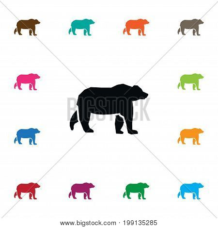 Wild Vector Element Can Be Used For Grizzly, Bear, Animal Design Concept.  Isolated Grizzly Icon.