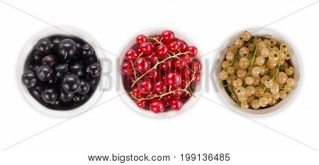 Set of different color currants isolated on white background cut out. White red and black currant in a wooden bowl with copy space for text. Top view.