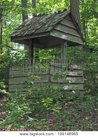an old well sits in the shadows of deep woods