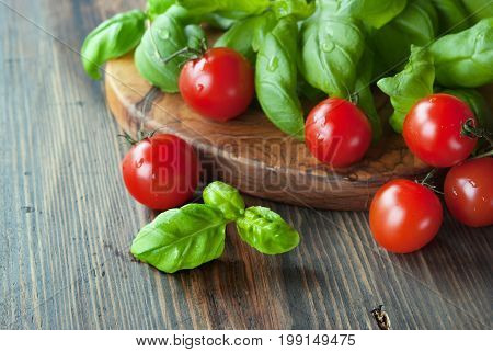 Bunch of fresh green basil and tomatoes olive cutting board at rustic wooden background