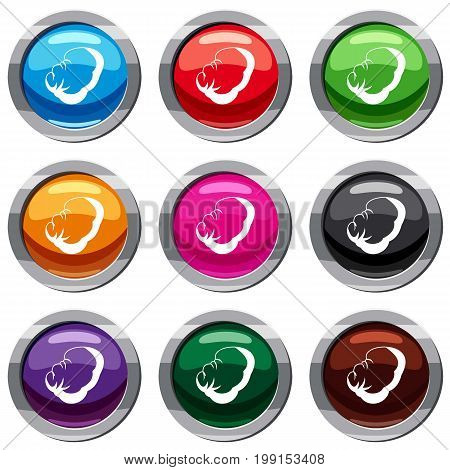 Spleen set icon isolated on white. 9 icon collection vector illustration