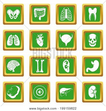 Human organs icons set in green color isolated vector illustration for web and any design