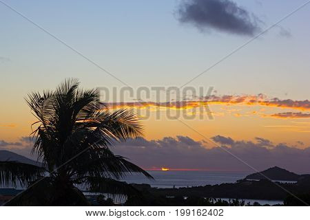 Sunrise with the clouds over Caribbean Sea on St Thomas island US VI. Palm tree is bending under the strong wind at dawn.