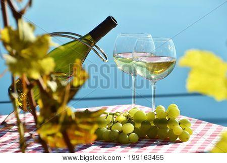 Wine and grapes. Lavaux region. Geneva lake, Switzerland